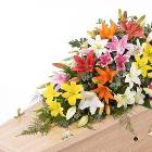 Lily Casket Spray - Mixed Colours